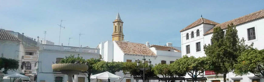transfer from malaga airport to Estepona